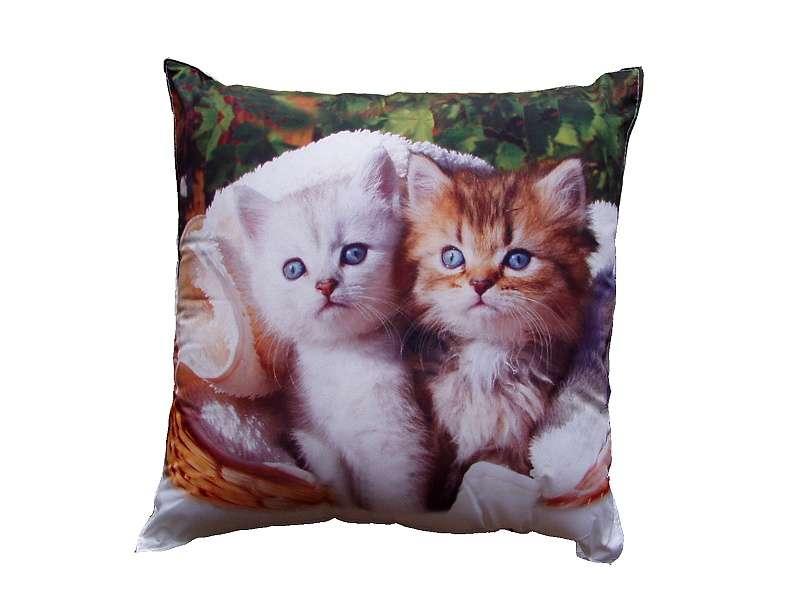 Fotovankúšik - Biele a hnedé mačiatko Dadka